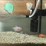 トトハウス(TOTO HOUSE) 水槽 浄水器 フィルタ ろ過装置 ミニ 繁殖酸素