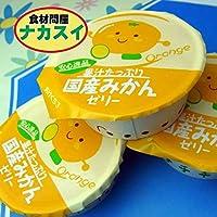 ニチレイ みかんゼリー 40g× 40個 【冷凍】(6ケース)