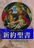Best 聖書研究 - 新約聖書(新版)FB-A6N Review