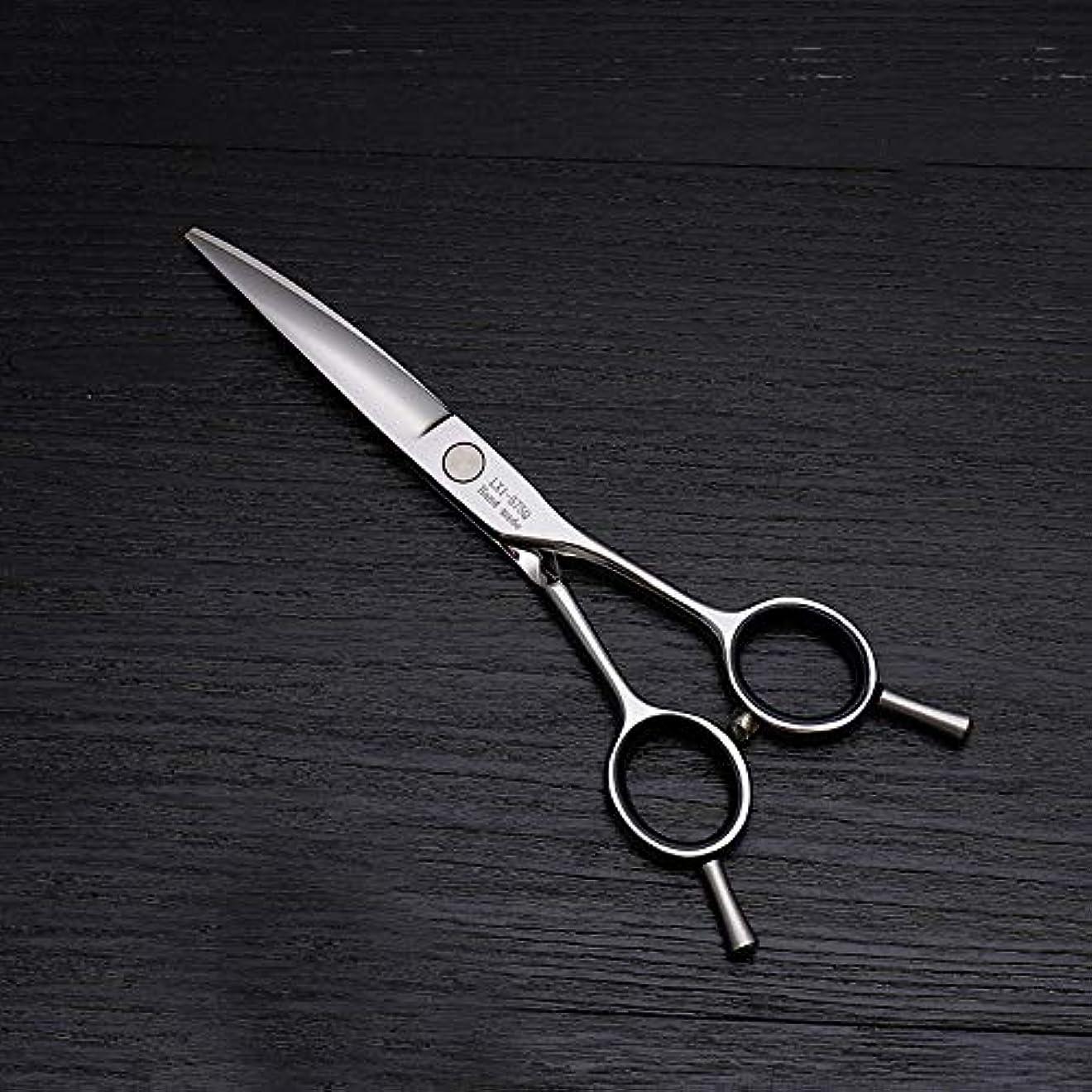 暴露する階層み6インチ美容院プロのヘアカット兼用バリカン、ヘアカットステンレス鋼トリマー モデリングツール (色 : Silver)