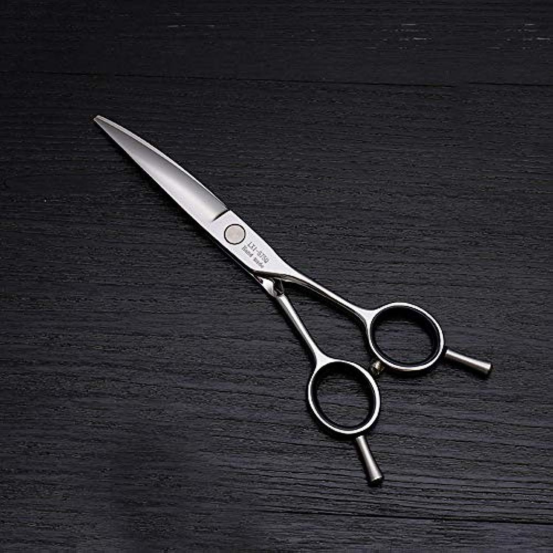 6インチ美容院プロのヘアカット兼用バリカン、ヘアカットステンレス鋼トリマー モデリングツール (色 : Silver)