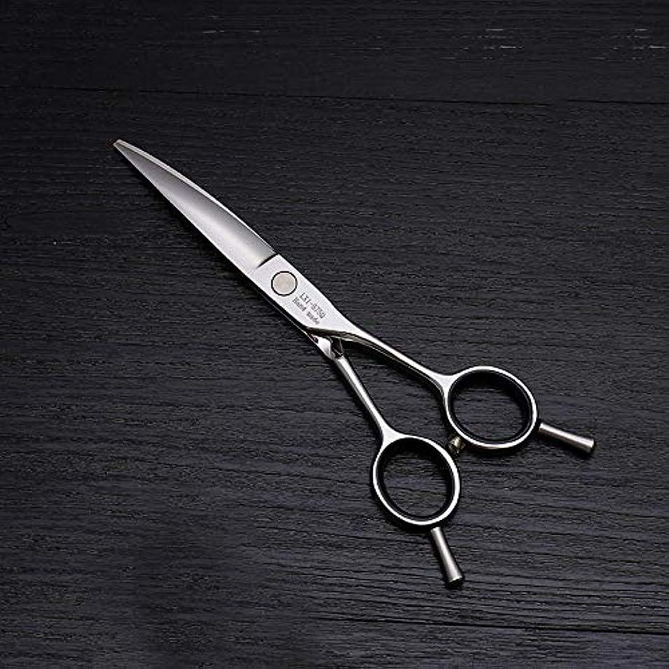 セミナー刺激するトリッキー6インチ美容院プロのヘアカット兼用バリカン、ヘアカットステンレス鋼トリマー ヘアケア (色 : Silver)