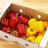 パプリカ 赤黄混合 3kg 新鮮 野菜