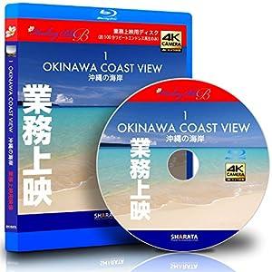 業務上映用4Kカメラ動画・映像【Healing Blue B ヒーリングブルーB】沖縄の海岸-1〈動画約100分〉 [Blu-ray]