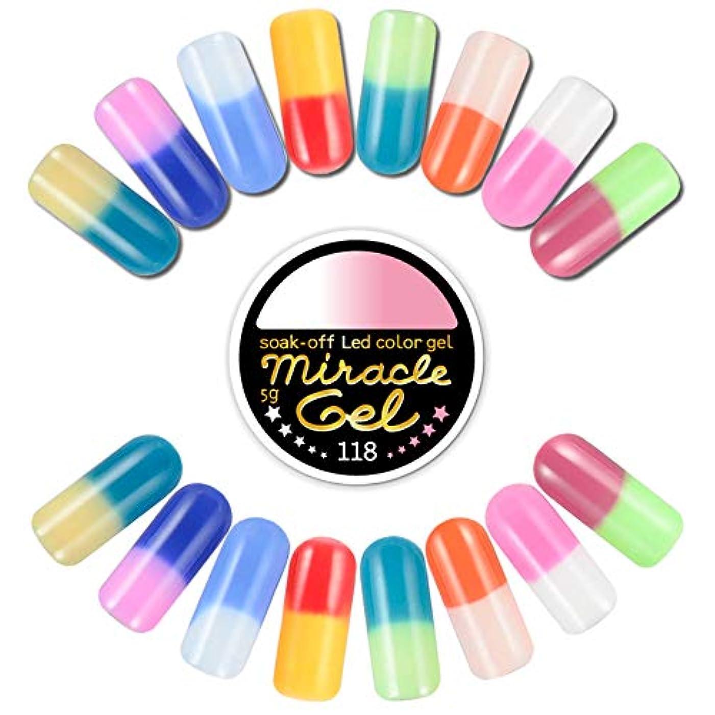エントリ不純彫刻温度で色が変わるジェル カラージェル ミラクルジェル 5g miracle gel ソークオフカラージェル 【182u
