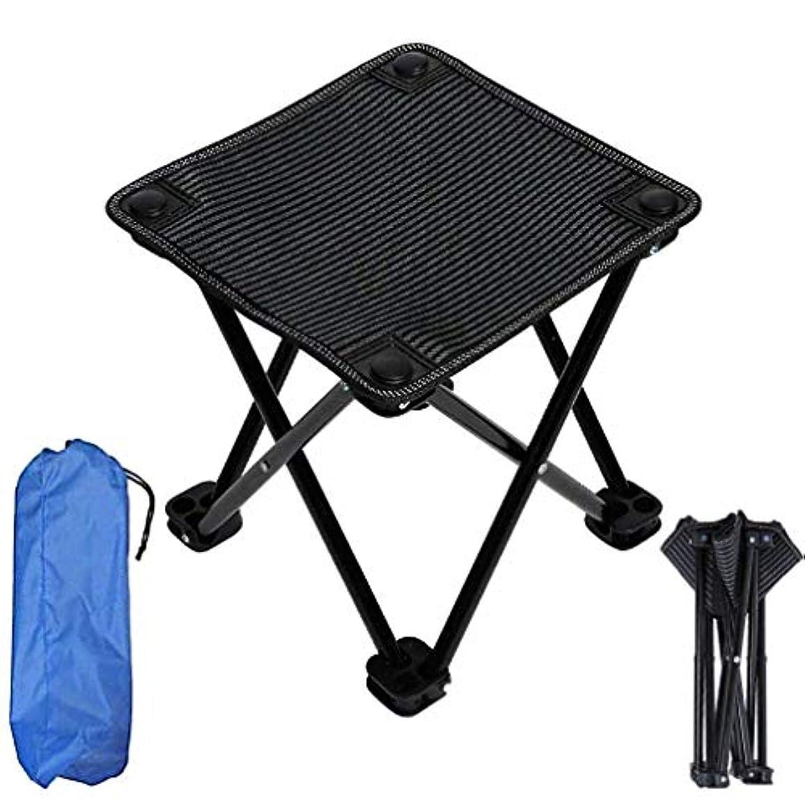 統計的ロイヤリティ座標キャンプチェア、余暇パッド入り折りたたみキャンプチェア、野外活動のためのシートスツール/キャンプ/バーベキュー/ビーチ/バックパッキング,B