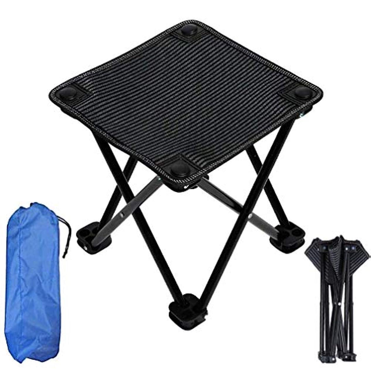 波紋これらいつ多機能屋外折りたたみ椅子、釣り椅子ピクニックスツールキャンプチェアビーチチェア - 軽量でポータブル - ブルー,B