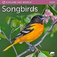 Songbirds ミニ壁掛けカレンダー 2020 月 1月~12月 7インチ x 7インチ