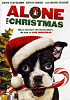 Alone for Christmas [DVD] [Import]
