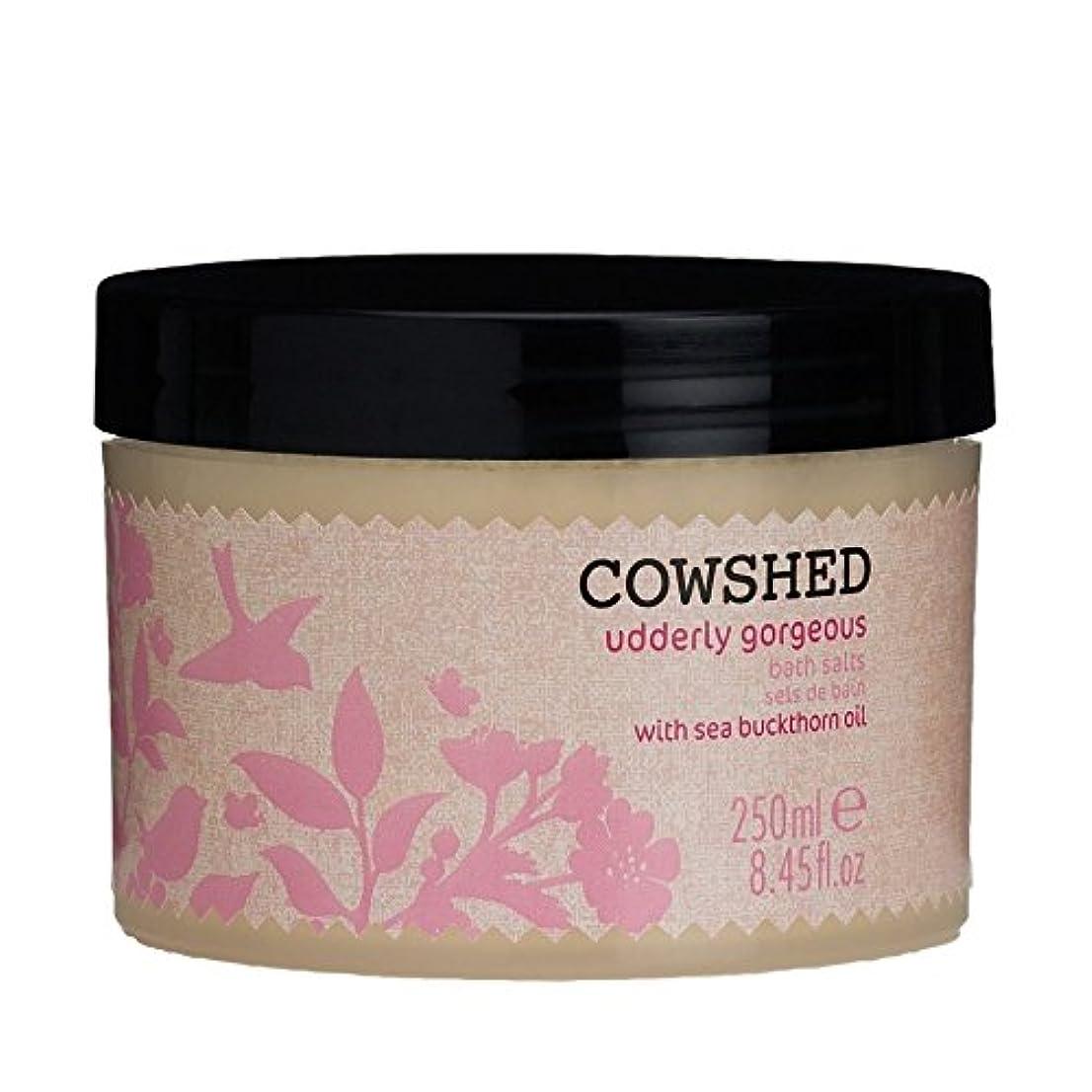 ガウン国内の回想Cowshed Udderly Gorgeous Bath Salts 250ml - 250ミリリットル牛舎ゴージャスな入浴剤 [並行輸入品]
