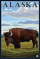 Bisonシーン–アラスカ 9 x 12 Art Print LANT-14269-9x12