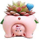 Youfui Cute Dog Flowerpot Animal Resin Succulent Planter Desk Mini Ornament (Pig)