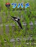 ツバメ―春にくる渡り鳥 (科学のアルバム・かがやくいのち)