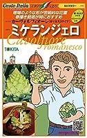 耐暑性を兼ね備え、春秋2作可能なロマネスコ【ミケランジェロ】のタネ小袋50粒いり