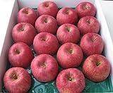 山形県東根市若木産 サンふじりんご/10kg/16個入り2段重ね