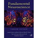 Fundamental Neuroscience, 4e