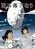 隕石落下なう