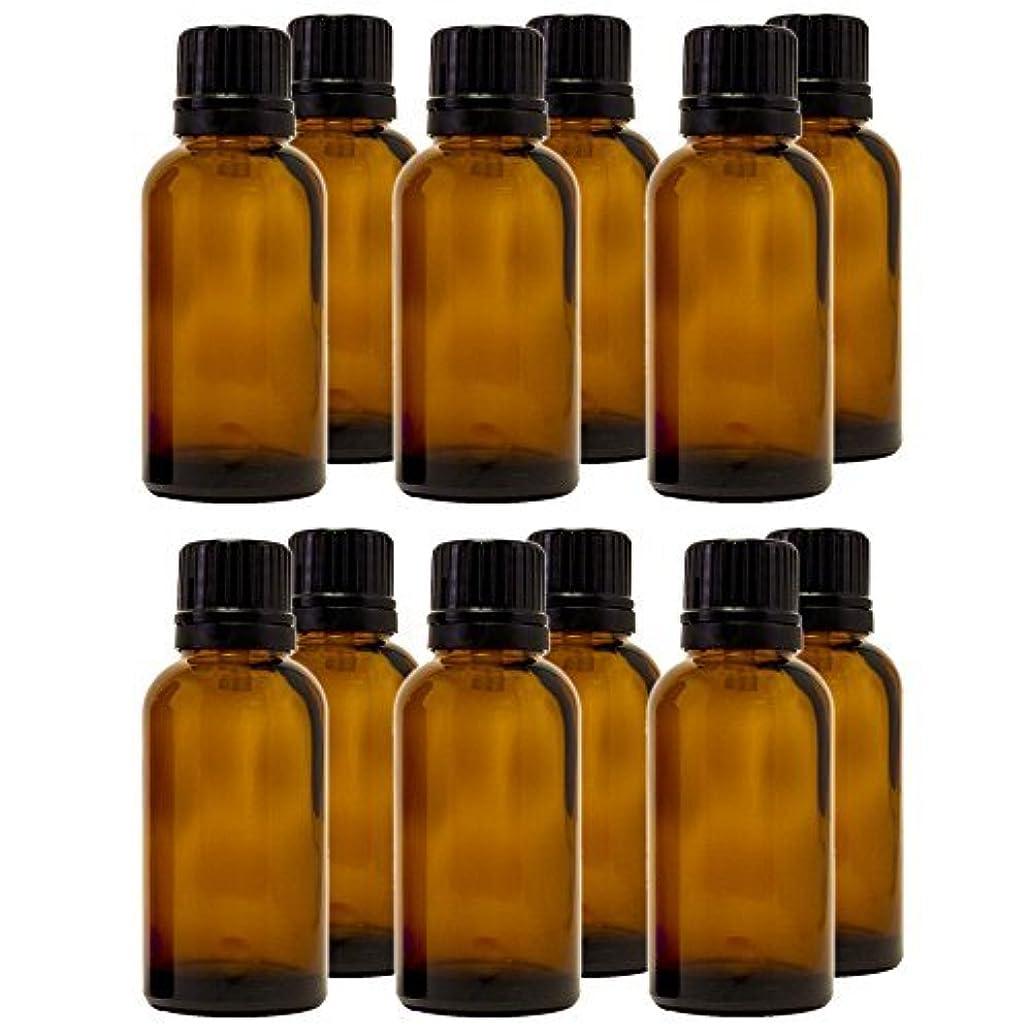 30 ml (1 fl oz) Amber Glass Bottle with Euro Dropper (12 Pack) [並行輸入品]