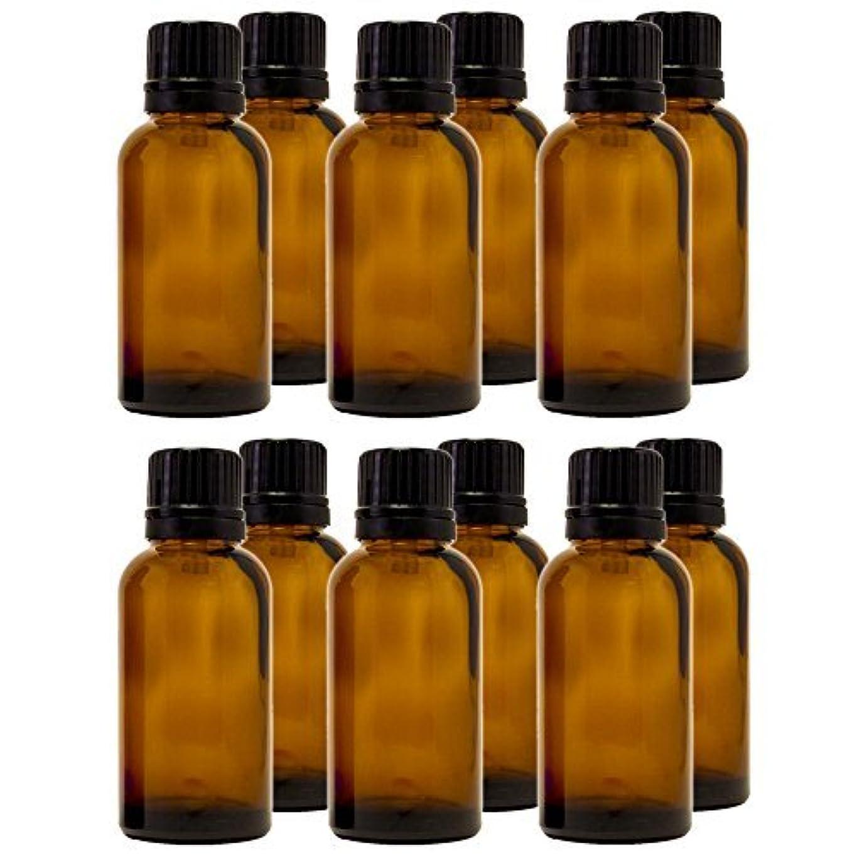 ボタン刺繍のり30 ml (1 fl oz) Amber Glass Bottle with Euro Dropper (12 Pack) [並行輸入品]