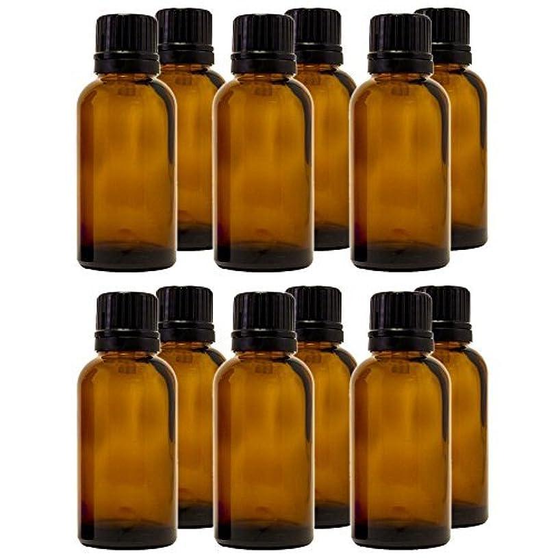 社会科上下する責め30 ml (1 fl oz) Amber Glass Bottle with Euro Dropper (12 Pack) [並行輸入品]