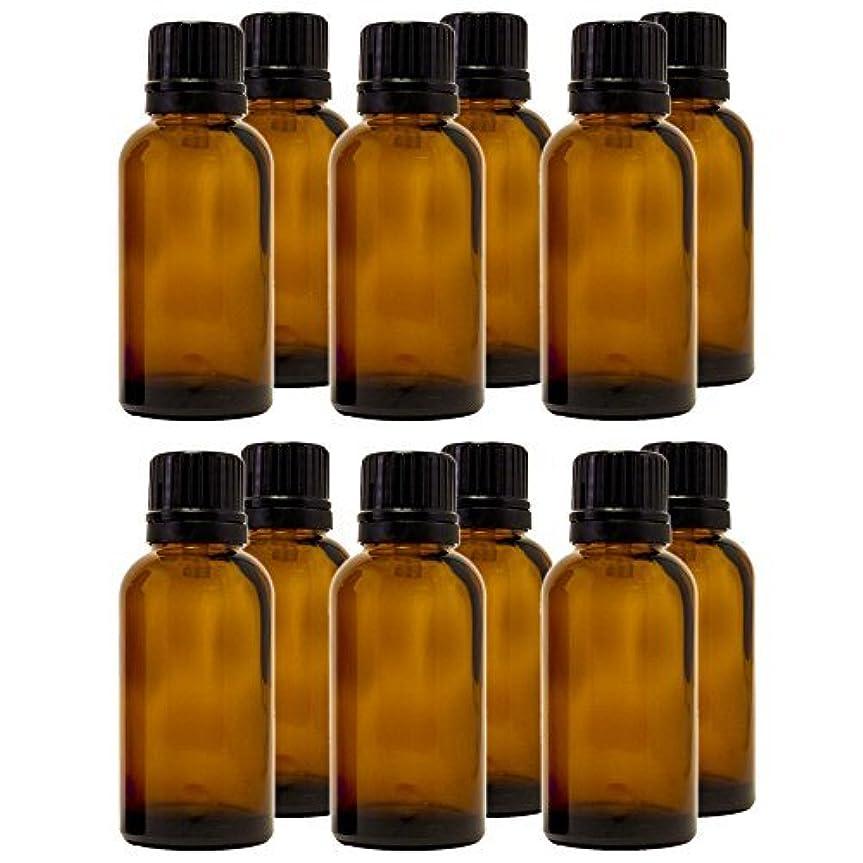 シーズン欺我慢する30 ml (1 fl oz) Amber Glass Bottle with Euro Dropper (12 Pack) [並行輸入品]