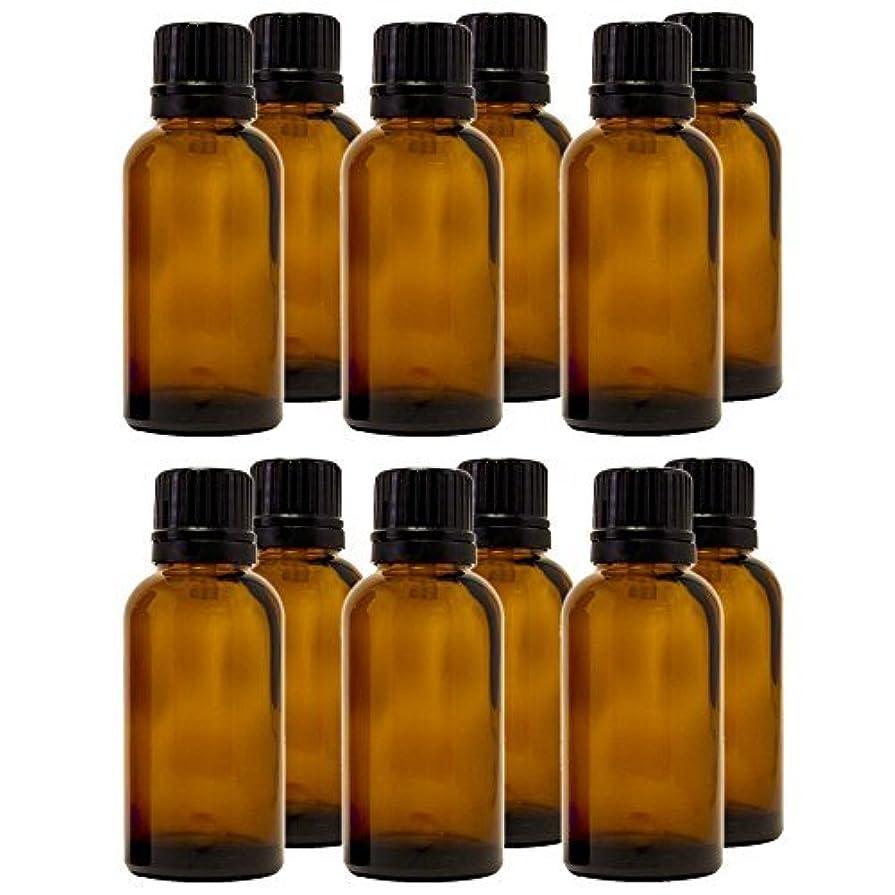 作者石灰岩と組む30 ml (1 fl oz) Amber Glass Bottle with Euro Dropper (12 Pack) [並行輸入品]