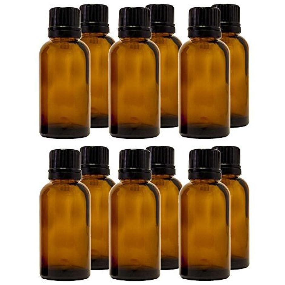 バルブレースすき30 ml (1 fl oz) Amber Glass Bottle with Euro Dropper (12 Pack) [並行輸入品]