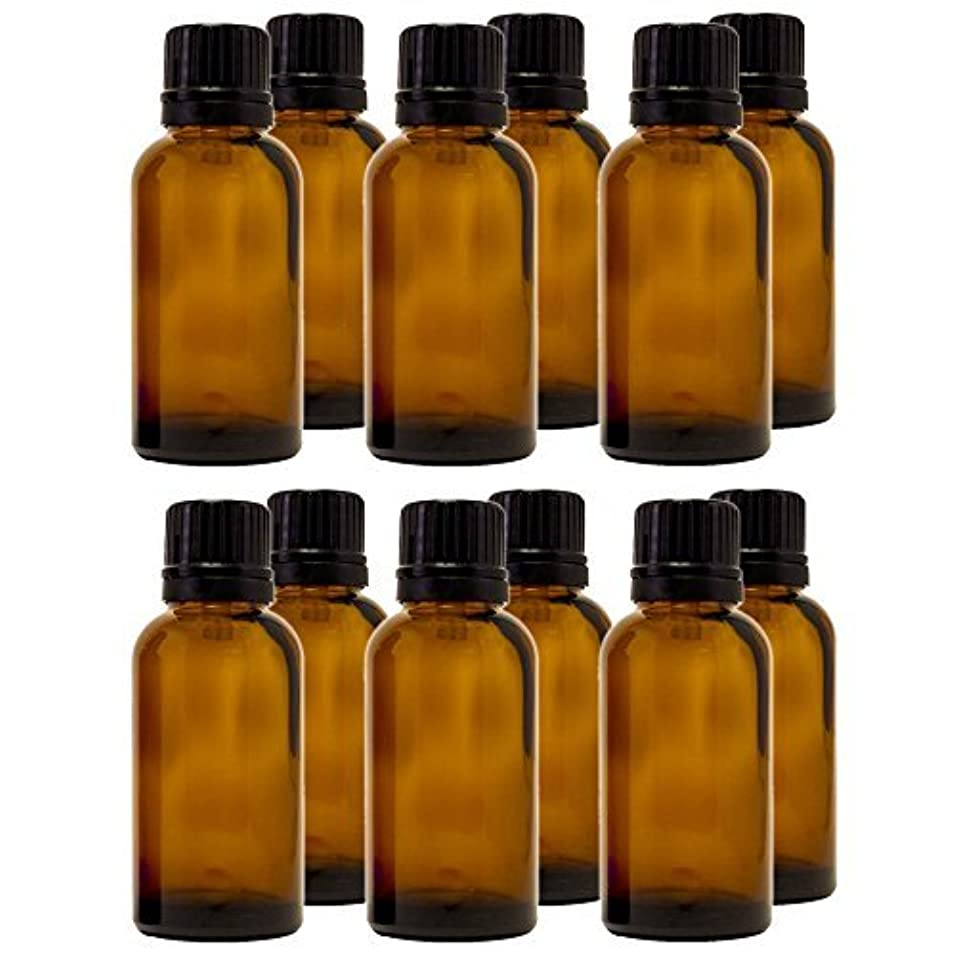 半島シンポジウムファンド30 ml (1 fl oz) Amber Glass Bottle with Euro Dropper (12 Pack) [並行輸入品]