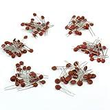 ReFaXi 50vセラミックコンデンサ 50種類 各20個 (合計1000個セット)