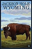ジャクソン穴、ワイオミング–Buffalo in Field 24 x 36 Signed Art Print LANT-23845-710