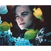 ブロマイド写真★『ロミオ+ジュリエット』レオナルド・ディカプリオ/水槽を見る