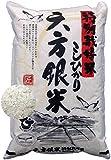 六方銀米 こしひかり 白米 5kg 令和産 特別栽培米 コウ