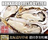 【春ギフト 北海道厚岸産 生牡蠣 殻付きLサイズ 10個 (90g?120g/1個) 軍手・カキナイフ付】 満天☆青空レストランでご紹介された厚岸の極上牡蠣! 世界中の食通をうならせる海のミルク。創業70年を誇る厚岸の牡蠣漁師より直送します。時にはギフトに、時には自分へのご褒美をちょっと贅沢に。