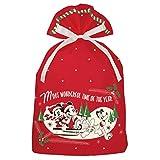 インディゴ ディズニー ミッキー クリスマスバッグ3L ミッキー ワンダフルタイム レッド DG097