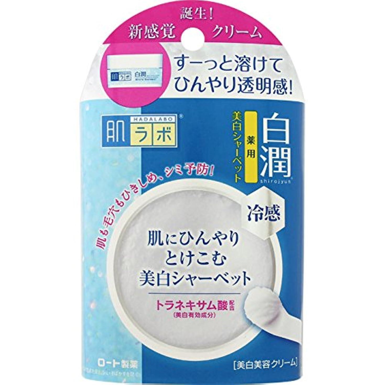 品集中浴【医薬部外品】肌ラボ 白潤 トラネキサム酸配合 ひんやり冷感美白シャーベット 30g
