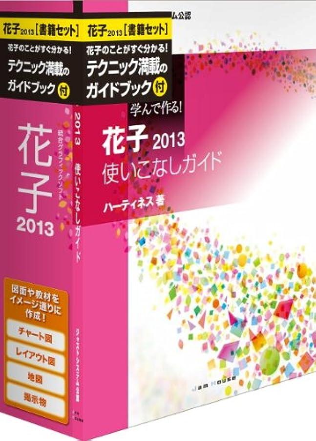 正気清める努力花子2013 書籍セット