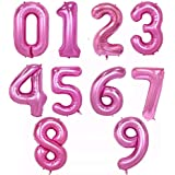 NANIWANOPANDA 浪速のパンダ 超ビッグ ピンク 数字 ナンバーバルーン 誕生日 バースデー インスタ映え SNS (9)