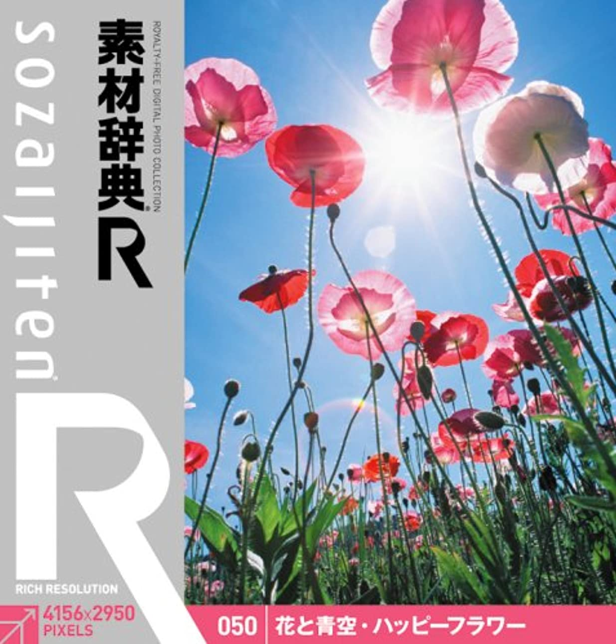 環境に優しい反乱伝記素材辞典[R(アール)] 050 花と青空?ハッピーフラワー
