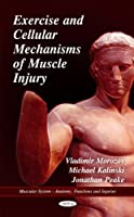 Exercise and Cellular Mechanisms of Muscle Injury (Muscular System - Anatomy, Functions and Injuries)