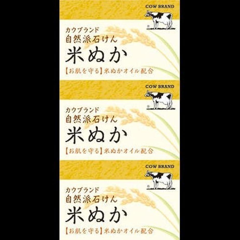 石消費するささいな【まとめ買い】カウブランド 自然派石けん 米ぬか 100g*3個 ×2セット