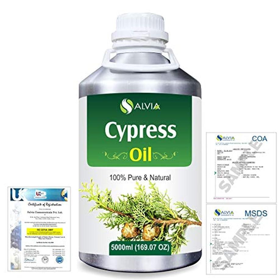 不誠実かんたん最もCypress(Cupressus sempervirens) 100% Natural Pure Essential Oil 5000ml/169fl.oz.