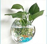 HuaRui壁掛け 水槽 アクアリウム 植木鉢 金魚鉢 花瓶 半球型 観賞魚 観葉植物 ガーデニング インテリア (小)
