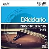 D'Addario ダダリオ マンドリン弦 フォスファーブロンズ Light .010-.038 EJ73 【国内正規品】