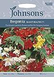 ガーデン・ペット・DIY通販専門店ランキング14位 JOFL 英国ジョンソンシード Begonia Basket & Beauty ベゴニア・バスケット&ビューティ