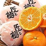 愛媛県産 みかん 中島便り 匠と極 蜜柑 約1.5kg 9~15玉前後