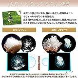 アイリスプラザ 羽毛布団 ホワイトダックダウン85% 日本製 充填量1.0kg シングルロング ブラウン 画像