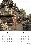 JAL「A WORLD OF BEAUTY」(大型判) 2017年 カレンダー 壁掛け