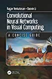 Convolutional Neural Networks in Visual Computing: A Concise Guide (Data-Enabled Engineering) (English Edition)