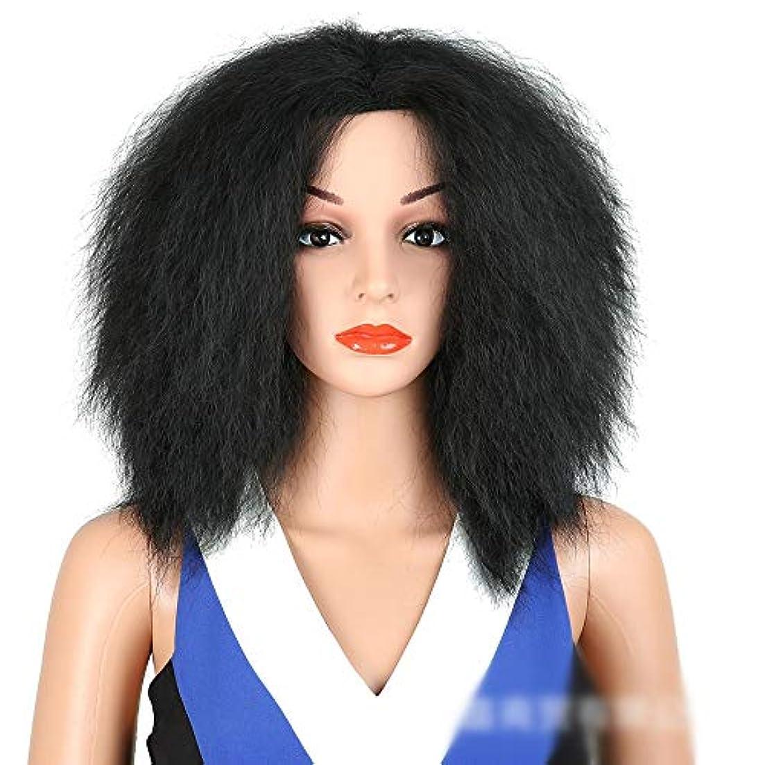 記録恥厄介なWASAIO アフロ変態ストレートヘア黒耐熱合成ミドルアクセサリースタイル交換用繊維パーツふわふわかつら女性 (色 : 黒)