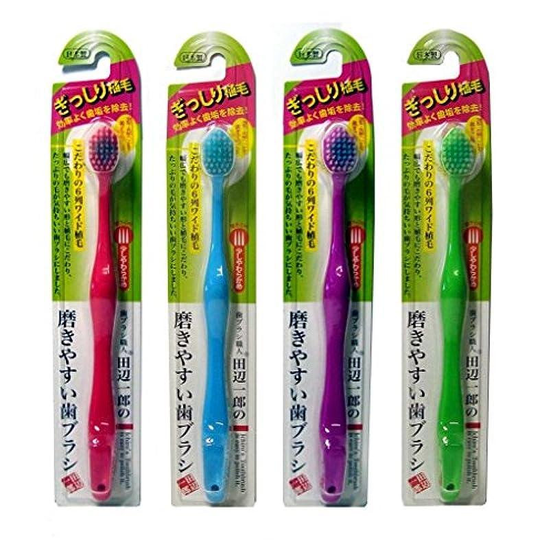 プレゼンテーションベルト不満ライフレンジ 田辺一郎の磨きやすい歯ブラシ 6列ワイドタイプ 少しやわらかめ LT-29 4本セット(レッド?ブルー?パープル?グリーン)